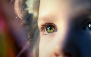 Занятия для детей с задержкой речевого развития: как прийти к положительному результату