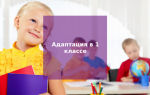 Адаптация детей в 1 классе: как помочь ребенку освоиться в школе